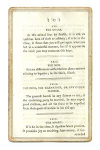 Отрывок из книги про Всадника