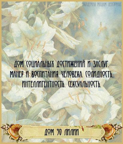 Колода Ленорман - Страница 2 30