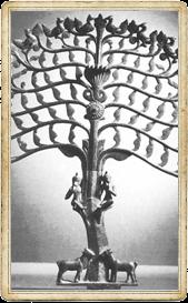 Древо жизни индийское