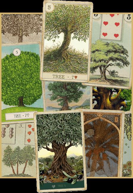 Зачение карты Ленорман Дерево