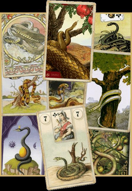 Зачение карты Ленорман Змея