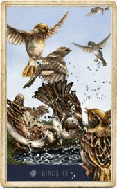 Птицы в колоде Ленорман «Анны К.»