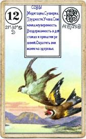 Птицы в колоде «Пятник»