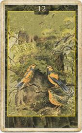 Птицы в колоде Ленорман Ло Скарабео