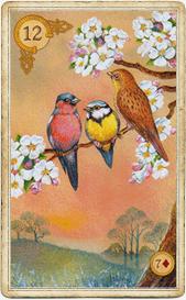 На карте Птицы изображен день