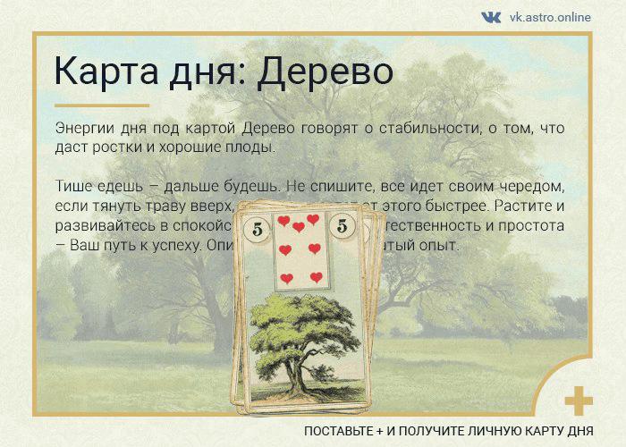 Карта дня Ленорман: Дерево