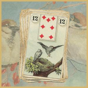 Карта дня Ленорман: Птицы