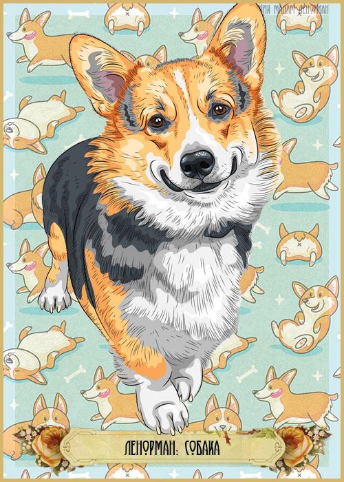 Зарисовки Ленорман, Собака