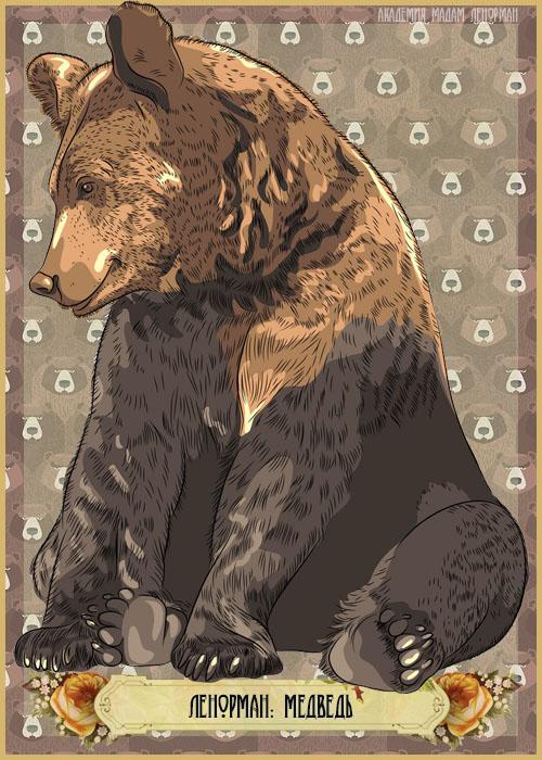 Зарисовки Ленорман, Медведь