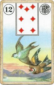 Пятник Ленорман, Птицы