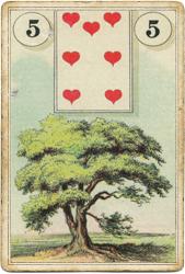 Ленорман Лауры Туан (Дондорф), Дерево