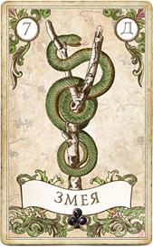 Оракул мадам Ленорман, Змея
