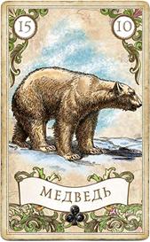 Оракул мадам Ленорман, Медведь
