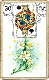 Пиковый Король , Лилии