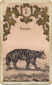Оракул Сведенборга, Тигр