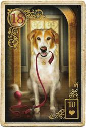 Золотые мечты Ленорман, Собака