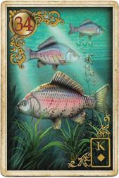 Золотые мечты Ленорман, Рыба