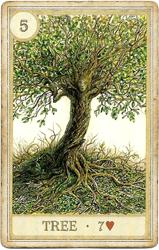 Сказочная Ленорман, Дерево