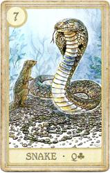Сказочная Ленорман, Змея