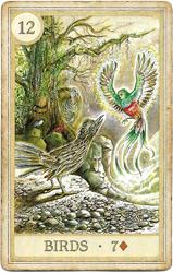Сказочная Ленорман, Птицы