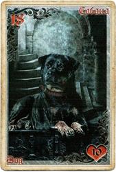 Антикарта на Ленорман: Собака