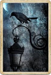 Антикарта на Ленорман: Птицы