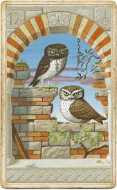 Мистическая Ленорман, Птицы